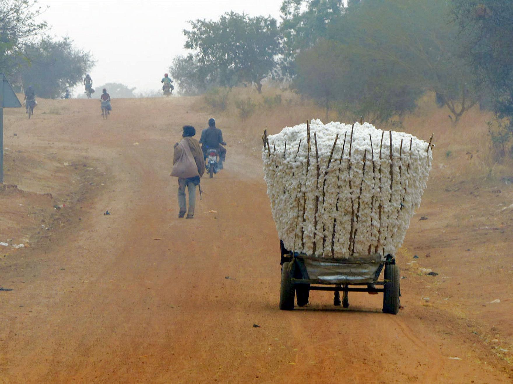 Commercialisation du coton graine
