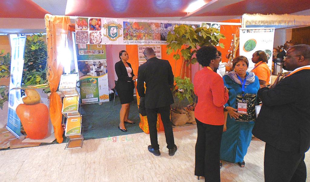 29ème Conférence Régionale de la FAO : le stand du Conseil du Coton et de l'Anacarde envahit par les visiteurs