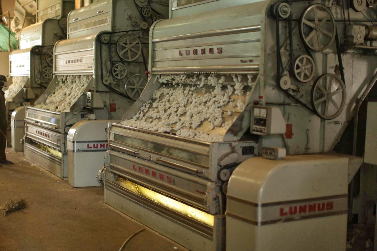Note circulaire N°001/DGA/SJC/COTON/OM/CCA-20 portant sur les dispositions régissant l'exportation des produits du coton au titre de la campagne 2020-2021