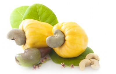cashew-nut-apple1