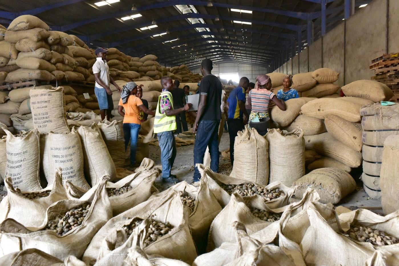 Note d'Information à l'attention des acteurs et partenaires de la filière anacarde / INFORMATION   NOTE For stakeholders  and partners  in the cashew nut sector