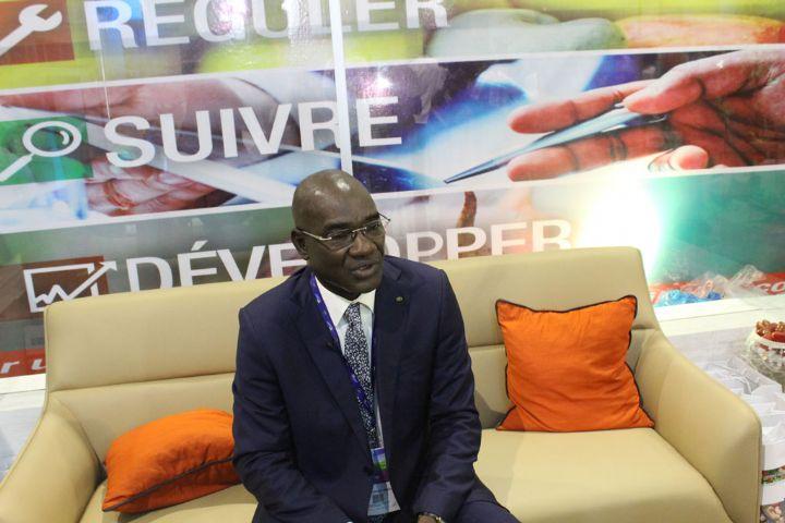 SARA 2017: Les opportunités d`investissement dans les filières anacarde et coton présentées aux participants